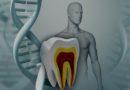 Crean banco de células madre troncales adultas